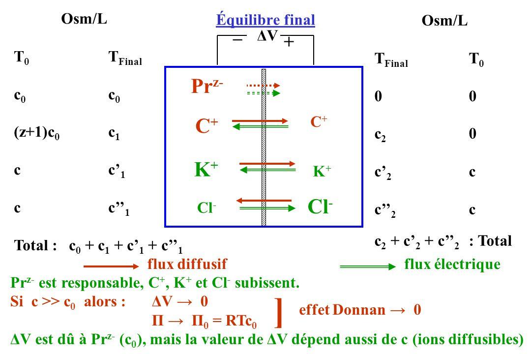 ] Prz- C+ K+ Cl- _ + Osm/L T0 TFinal c0 c0 (z+1)c0 c1 c c'1 c c''1